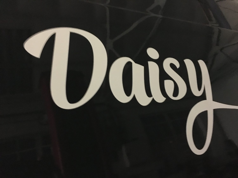 VW Camper Daisy Decals